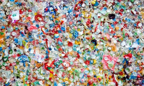 A wall of gum and trash.